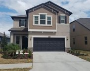 21861 Crest Meadow Drive, Land O' Lakes image