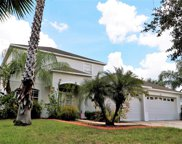 11414 Callaway Pond Drive, Riverview image