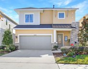 14238 Natures Reserve Drive, Lithia image