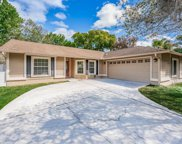 17519 Willow Pond Drive, Lutz image