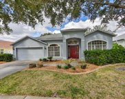 9210 Waterbird Drive, Riverview image