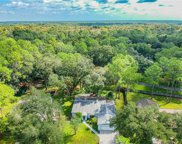 5402 Swallow Drive, Land O' Lakes image