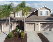 10329 Willow Leaf Trail, Tampa image
