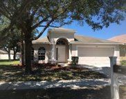 7325 Spandrell Drive, Wesley Chapel image