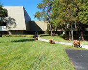 36750 Us Highway 19  N Unit 04222, Palm Harbor image