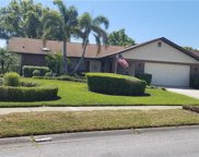 1766 Powder Ridge Drive, Palm Harbor image