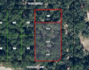 12018 N Peartree Terrace, Dunnellon image