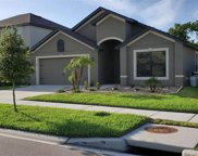 11860 Thicket Wood Drive, Riverview image