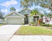 10437 Springrose Drive, Tampa image