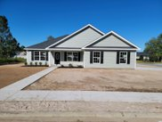 2632 Warm Springs Ln., Conway image