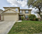 12419 Cotton Creek, San Antonio image