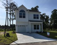 401 Terrace View Ct., Myrtle Beach image
