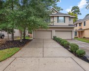 194 W Stedhill Loop, The Woodlands image