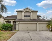 23845 Hastings Way, Land O' Lakes image