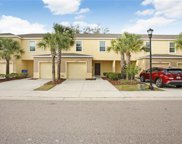 9738 Hound Chase Drive, Gibsonton image