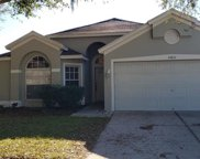 13611 Staghorn Road, Tampa image