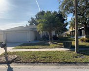 12003 Cedarfield Drive, Riverview image