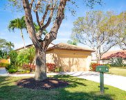 42 Ironwood Way N, Palm Beach Gardens image