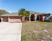 3036 Lake Padgett Drive, Land O' Lakes image