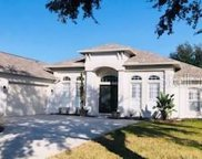 13228 Thoroughbred Drive, Dade City image