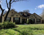 304 Forest Country Dr, La Vernia image
