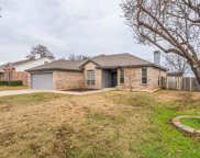 1216 Chapel Hill Drive, Mansfield image