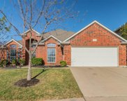 10133 Red Bluff Lane, Fort Worth image