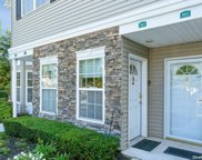 103 Spring  Drive Unit #103, East Meadow image