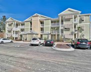 133 Puffin Dr. Unit 1-D, Pawleys Island image