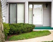 165 Morningside Ln East, Buffalo Grove image