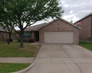 10785 Braemoor Drive, Fort Worth image