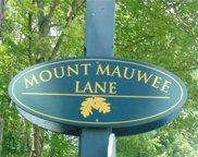 24 Mt Mauwee, Kent image