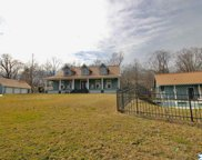 1776 County Road 140, Gaylesville image