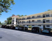 1375 Doolittle Lane Unit 102, Dunedin image