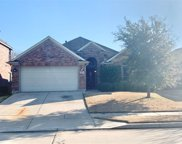 9601 Willow Branch Way, Fort Worth image