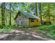 26105 E HENRY CREEK  RD, Rhododendron image