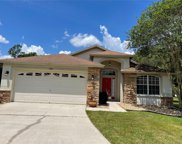 34510 Cliffcreek Court, Wesley Chapel image
