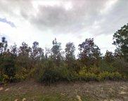 Brunswick Drive, Chipley image