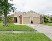 3226 Cloverplace Drive, Palm Harbor image