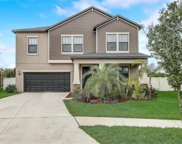 11732 Winterset Cove Drive, Riverview image