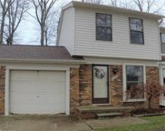 27985 RED CEDAR LANE, Harrison Twp image