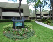 36750 Us Highway 19  N Unit 03120, Palm Harbor image