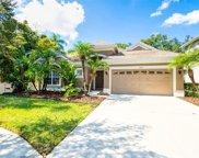 15610 N Himes Avenue, Tampa image