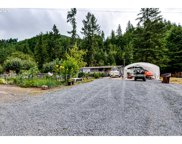37855 ROW RIVER  RD, Dorena image
