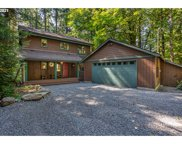 70494 E TERRACE  DR, Rhododendron image