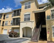 5125 Palm Springs Boulevard Unit 11203, Tampa image