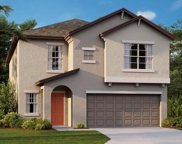 10211 Cool Waterlily Avenue, Riverview image