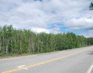 MILE 309 Parks Highway, Nenana image
