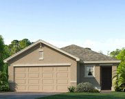 12157 Downy Birch Drive, Riverview image