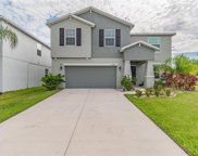 10266 Strawberry Tetra Drive, Riverview image